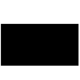 Logo PAGEPRESS